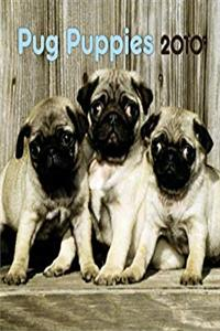 Fb2 Pug Puppies 2010 Mini Wall ePub